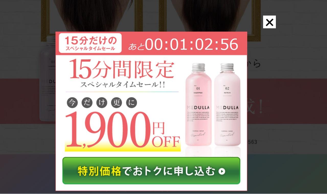 メデュラ1900円クーポン券